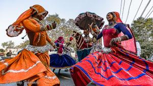 アルワルフェス(インド)